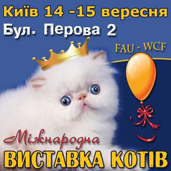 Международная выставка котов 14-15 сентября в Киеве на б. Перова 2