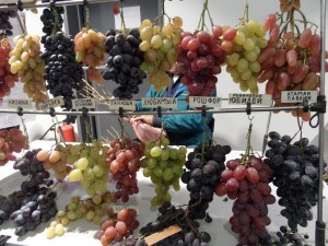 виноград на зеленой ярмарке