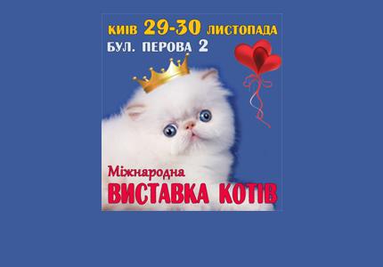 """29-30 ноября в зале """"Ровесник"""" на Дарнице пройдет выставка кошек"""