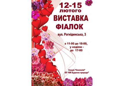 С 12 по 15 февраля в Доме Природы пройдет выставка фиалок ко Дню Святого Валентина
