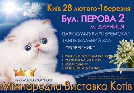 С 28 февраля по 1 марта в парке Победы пройдет выставка кошек
