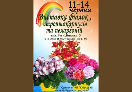 11-14 июня в Доме Природы пройдет выставка комнатных растений