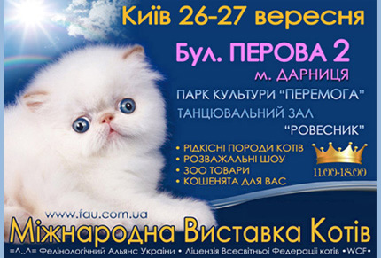 """З 26 по 27 вересня в парку """"Перемога"""" відбудеться Міжнародна виставка котів"""