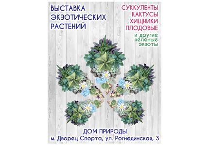 С 8 по 11 октября в Доме Природы пройдет выставка кактусов и других экзотических растений