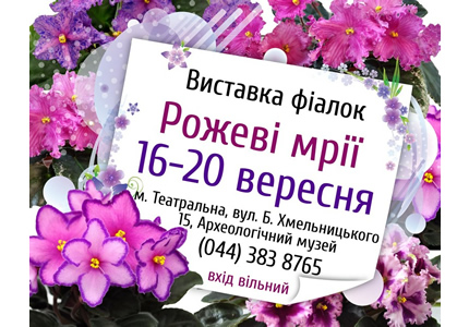 """З 16 по 20 вересня в Археологічному музеї відбудеться виставка фіалок """"Рожеві мрії"""""""
