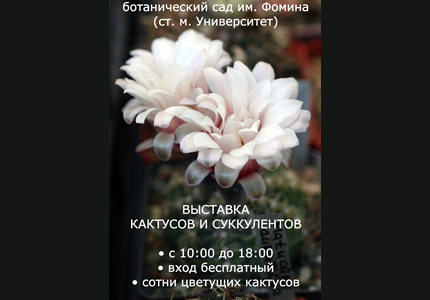 С 12 по 20 сентября в парке Ботсада им.Фомина пройдет выставка кактусов и суккулентов