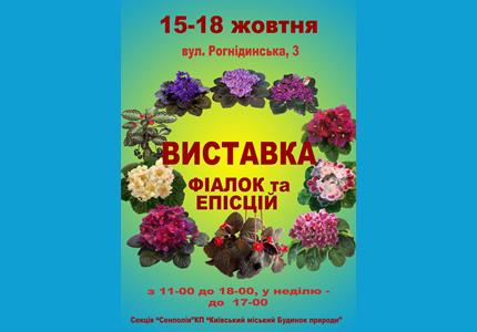 15-18 октября в Доме Природы пройдет выставка фиалок и эписций «Фиалки на Рогнединской»