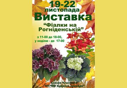 З 19 по 22 листопада в Будинку Природи відбудеться виставка фіалок та стрептокарпусов «Фіалки на Рогнединської»