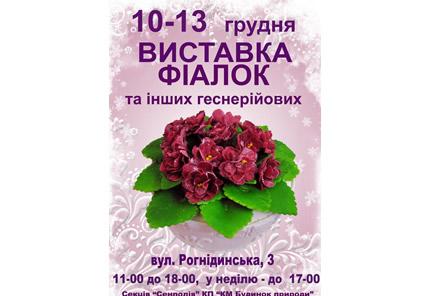 10-13 грудня в Будинку Природи відбудеться виставка «Фіалки на Рогнединській»