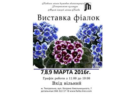 З 7 по 9 березня в Музеї історії Києва відбудеться виставка колекційних фіалок