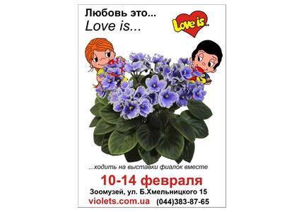 """10-14 февраля в Зоологическом музее пройдет праздничная выставка фиалок """"Love is.."""""""