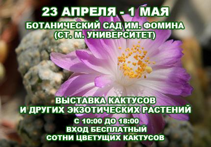 С 23 апреля по 1 мая возле Ботанического сада им.Фомина проходит выставка кактусов и других экзотических растений
