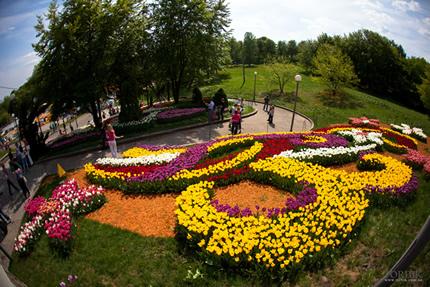 """С 20 апреля по 29 мая на Певческом поле проходит выставка цветов """"Цветущие реки"""""""