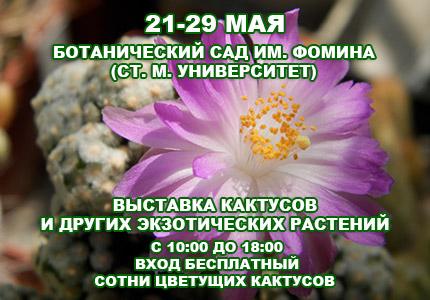 С 21 по 29 мая возле Ботсада им.Фомина пройдет выставка кактусов и других экзотических растений