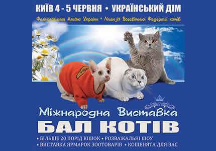 4-5 червня в Українському Домі відбудеться Міжнародний Бал Котів
