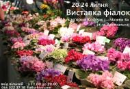 С 20 по 24 июля в кафе «Кофиум» пройдет выставка фиалок
