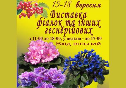 С 15 по 18 сентября в Доме Природы пройдет выставка «Фиалки на Рогнединской»