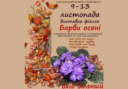 """С 9 по 13 ноября в Археологическом музее пройдет выставка фиалок """"Барви осені"""""""