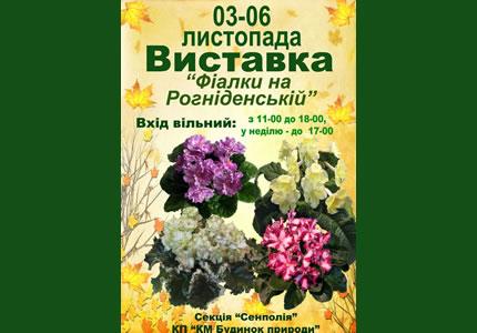 3-6 ноября в Доме Природы пройдет выставка «Фиалки на Рогнединской»