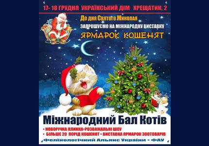 17-18 грудня в Українському Домі відбудеться Міжнародний бал котів