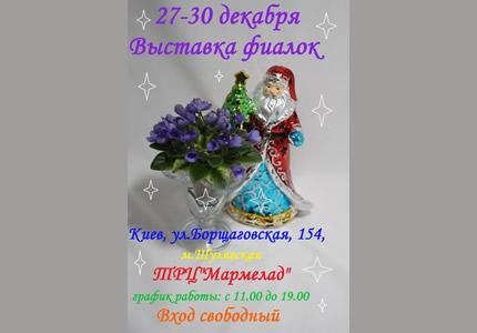 С 27 по 30 декабря в ТРЦ Мармелад проходит выставка коллекционных фиалок