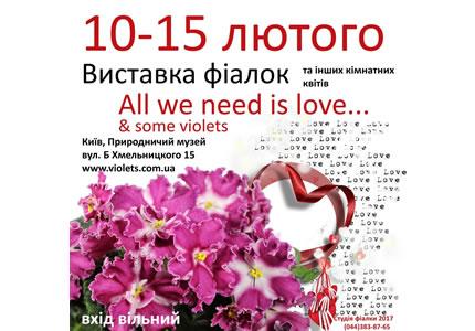 З 10 по 15 лютого в Археологічному музеї відбудеться виставка фіалок