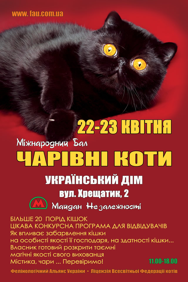 """С 22 по 23 апреля в Украинском Доме пройдет выставка котов """"Волшебные Кошки"""""""