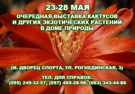 23-25 мая в Доме Природы пройдет выставка кактусов и прочих экзотических растений