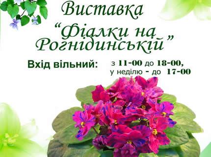 """11-14 мая в Доме природы пройдет выставка """"Фиалки на Рогнединской"""""""