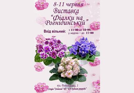"""8-11 июня в Доме Природы пройдет выставка """"Фиалки на Рогнединской"""""""
