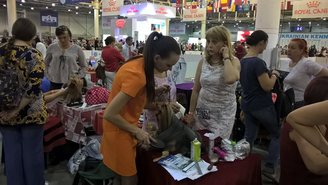 Euro Dog Show 2017. Фото 5