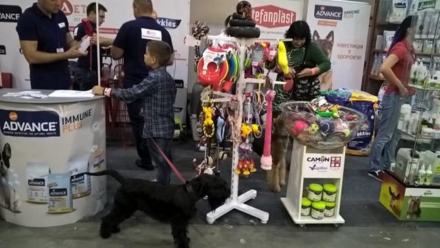 Euro Dog Show 2017. Фото 6