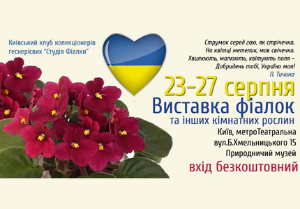 С 23 по 27 августа в Археологическом музее пройдет праздничная выставка фиалок