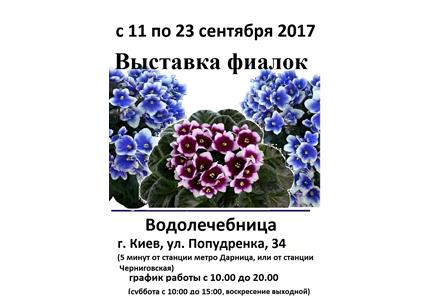 С 11 по 23 сентября на территории дарницкой водолечебницы пройдет выставка фиалок