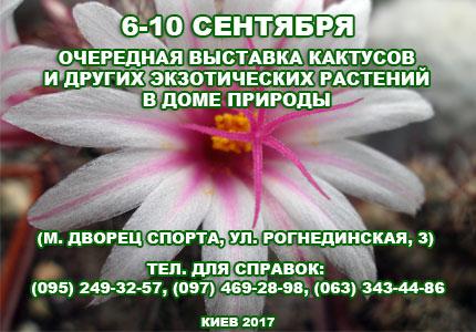 6-10 сентября в Доме природы пройдет выставка кактусов и других экзотических растений