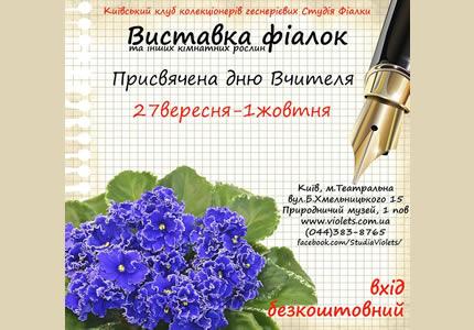 С 27 сентября по 1 октября в Археологическом музее пройдет выставка фиалок посвященная Дню Учителя