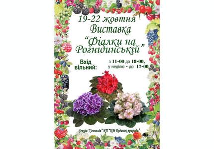 """С 19 по 22 октября в Доме природы пройдет выставка """"Фиалки на Рогнединской"""""""