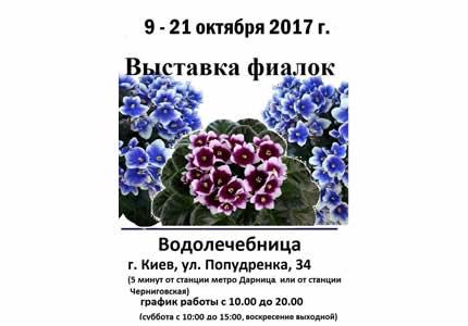 С 9 по 21 октября на территории Дарницкой водолечебницы пройдет выставка фиалок