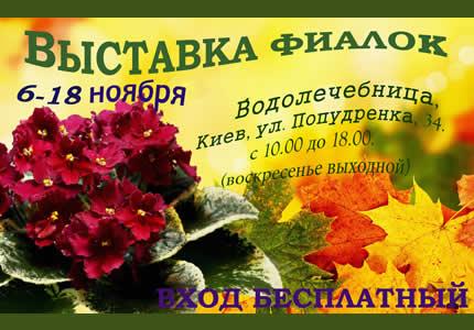 С 6 по 18 ноября на территории дарницкой водолечебницы пройдет выставка фиалок