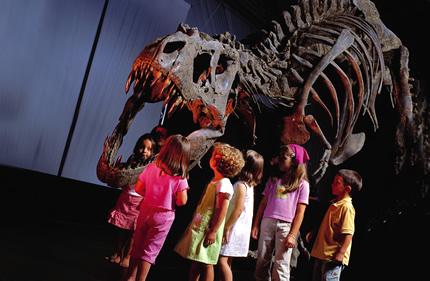 В павильоне №23 на ВДНХ проходит выставка окаменелостей и минералов