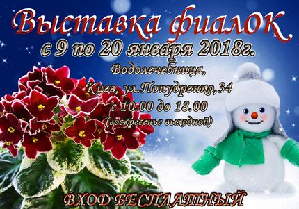 С 9 по 20 января на территории дарницкой водолечебницы пройдет выставка фиалок