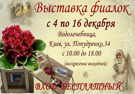 4-16 декабря на территории дарницкой водолечебница пройдет выставка фиалок