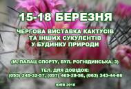 С 15 по 18 марта в Доме природы проходит выставка кактусов и других экзотических растений