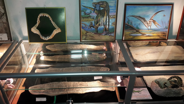 """В павильоне """"Наука""""на ВДНХ работает постоянно действующая выставка интерактивная """"Выставка древностей"""""""