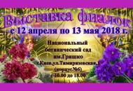 С 12 апреля по 13 мая в Национальном Ботаническом саду им. Н.Н. Гришко пройдет выставка фиалок