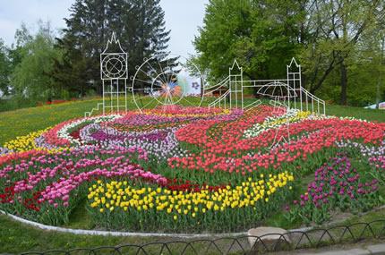 """С 27 апреля по 27 мая на Певческом поле проходит выставка тюльпанов """"Вокруг света"""""""
