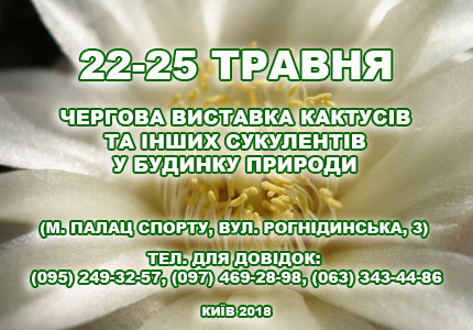 С 22 по 25 мая в Доме природы пройдет выставка кактусов и прочих сукулентов