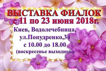 С 11 по 23 июня на территории дарницкой Водолечебницы пройдет выставка фиалок