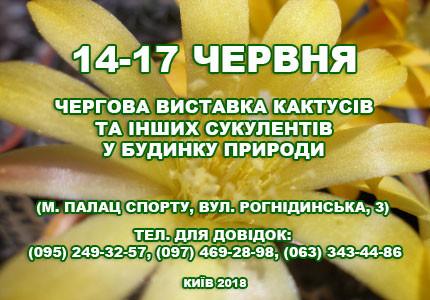 С 14 по 17 июня в Доме природы пройдет выставка кактусов и прочих суккулентов