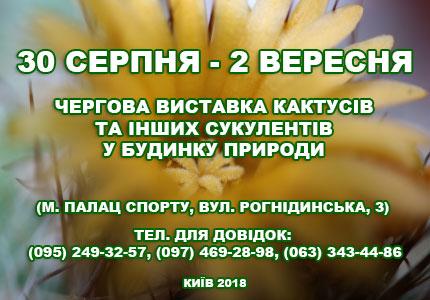 С 30 августа до 2 сентября в Доме природы пройдет выставка кактусов и других экзотических растений
